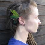 vert canard 2