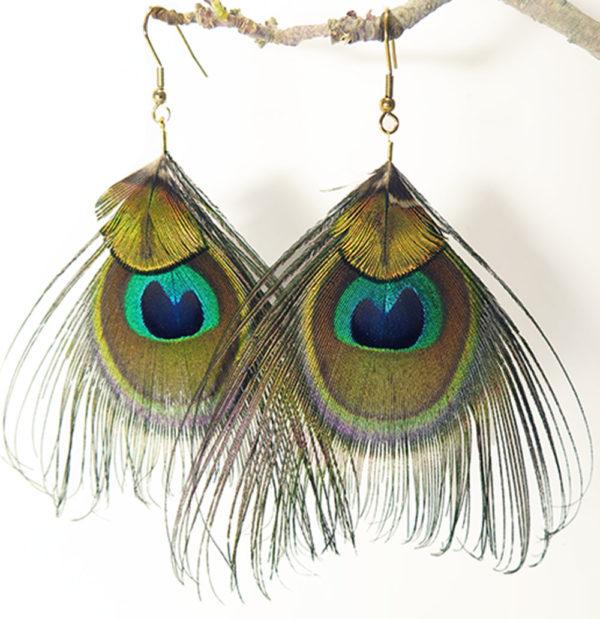 boucle-d'oreille-plume-naturelle-paon